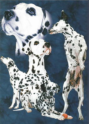 Drawing - Dalmatian Alteration by Barbara Keith