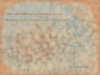 Photograph - Dandelion Dreams by Angela Davies