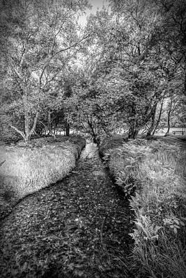 Photograph - Dark Irish Stream In Black And White by Debra and Dave Vanderlaan