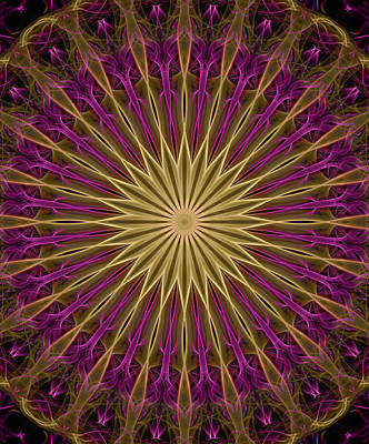 Digital Art - Dark Pink And Golden Mandala by Jaroslaw Blaminsky
