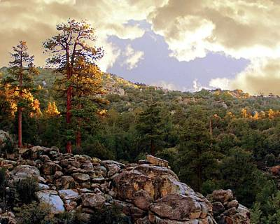Photograph - Dawn In Van Dusen Canyon by Timothy Bulone