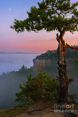 Photograph - Dawn Over The Gorge by Anthony Heflin