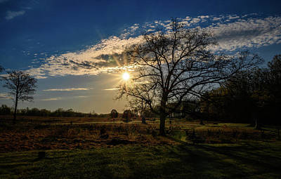 Photograph - Dawn Thru The Tree by Dan Urban