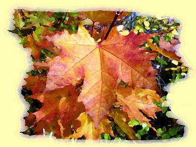 Digital Art - Days Of Autumn 6 by Will Borden