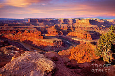 Photograph - Dead Horse Point View by Brian Jannsen