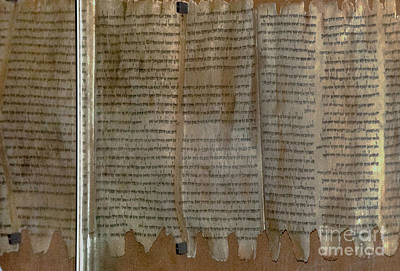 Photograph - Dead Sea Scroll by Mae Wertz