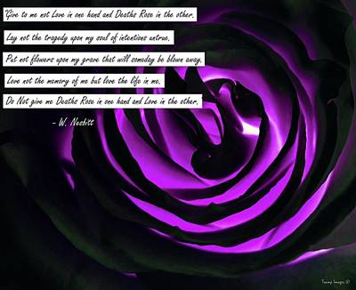 Digital Art - Death Rose by Wesley Nesbitt