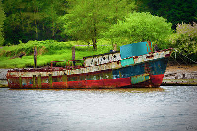 Photograph - Decaying Yet Still Afloat by Dee Browning