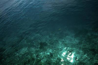 Photograph - Deep Blue Ocean by Jenny Rainbow