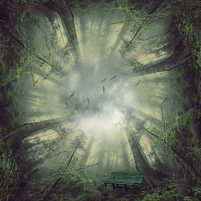 Fantasy Digital Art - Deep forest by Mihaela Pater