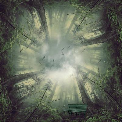 Surrealism Digital Art - Deep forest by Mihaela Pater