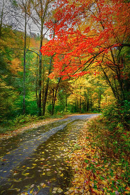 Photograph - Deep Into Autumn Painting by Debra and Dave Vanderlaan