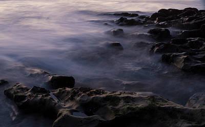 Photograph - Deep Purple by Alex Lapidus