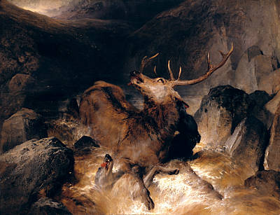 Painting - Deer And Deer Hounds In A Mountain Torrent by Edwin Landseer