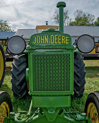 Photograph - Deere In Headlights by Mark Dodd
