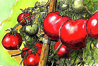Painting - Delicious Tomatoes by Terry Banderas