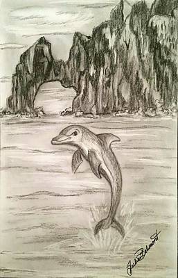 Drawing - Delphy the Dolphin by Julie Belmont