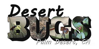 Photograph - Desert Bugs Big Letter by Colleen Cornelius
