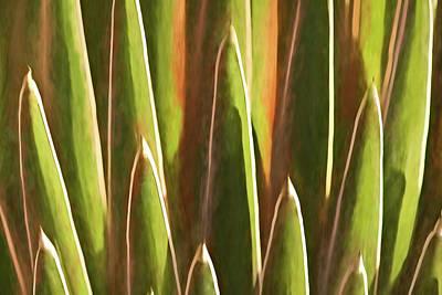 Photograph - Desert Growth II by Leda Robertson