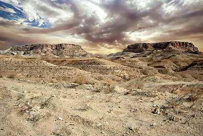 Photograph - Desert Landscape by Anthony Dezenzio