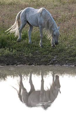 Photograph - Desert Mirror by Kent Keller