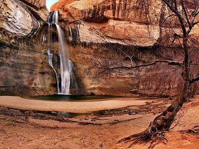 Photograph - Desert Oasis by Leland D Howard