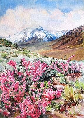 Painting - Desert Peach by Lynn Marit Peterson