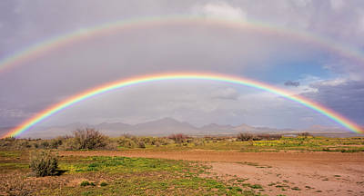 Photograph - Desert Rainbow by Loree Johnson