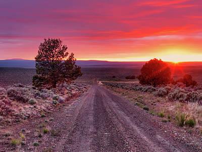 Photograph - Desert Road 4 by Leland D Howard