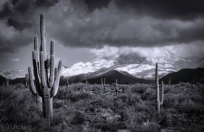 Photograph - Desert Snow In Black And White  by Saija Lehtonen