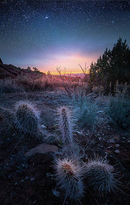 Photograph - Desert Star Dust / Arizona  by Nicholas Parker