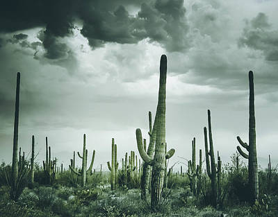 Desert Storm In Arizona Art Print