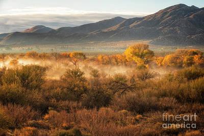 Photograph - Desert Sunrise by Jennifer Magallon