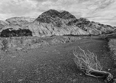 Photograph - Desolation Canyon - Black And White by Loree Johnson