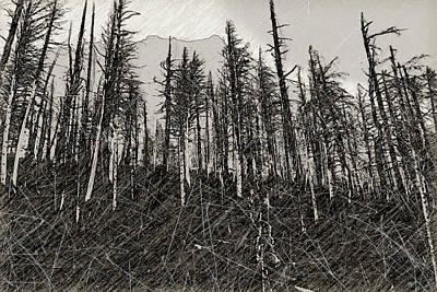 Wall Art - Photograph - Desolation by Roslyn Wilkins