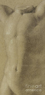 Pastel - Detail Of A Torso Of A Young Man Detail, 1800 by Philipp Otto Runge
