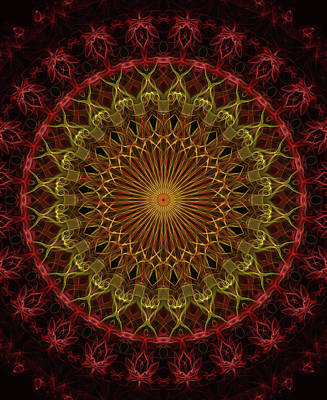 Digital Art - Detailed Mandala In Red And Golden Tones by Jaroslaw Blaminsky