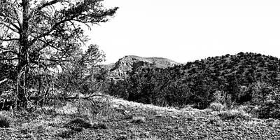 Photograph - Diamondback Gulch - Sedona Arizona by David Patterson