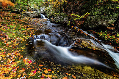 Photograph - Different Paths by Jeff Folger