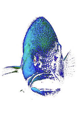 Digital Art - Digi Grouper by Monique Taree