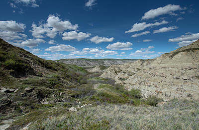 Photograph - Dinosaur Fossil Country by Philip Rispin