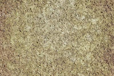 Photograph - Dirt Background by Sbayram