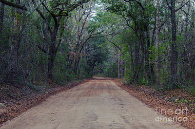 Photograph - Dirt Road To The Angel Oak Tree In Charleston by Dale Powell