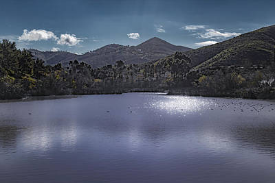 Photograph - Discovery Lake Beauty by Alison Frank