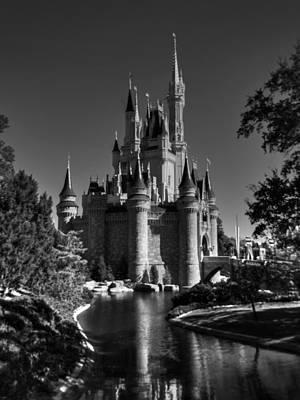 Photograph - Disney 002 Bw by Lance Vaughn