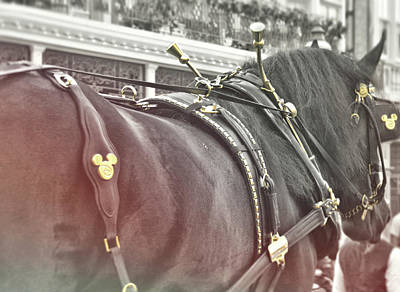 Photograph - Disney Steed by Jamart Photography