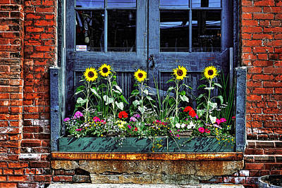 Photograph - Distillery Flower Box by Images By Martin Pinker