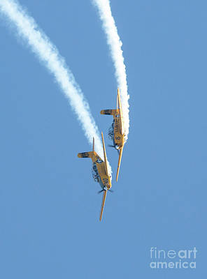 Photograph - Diving Aerobatic Aircraft by Kevin McCarthy