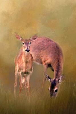 Photograph - Doe Mom And Offspring by HH Photography of Florida