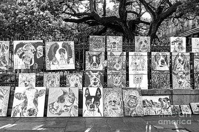 Photograph - Dog Art At Jackson Square New Orleans by John Rizzuto